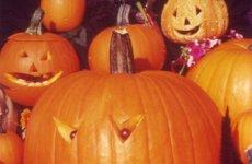 halloweenschnitzkrbiskiepenkerlteaser_teaser